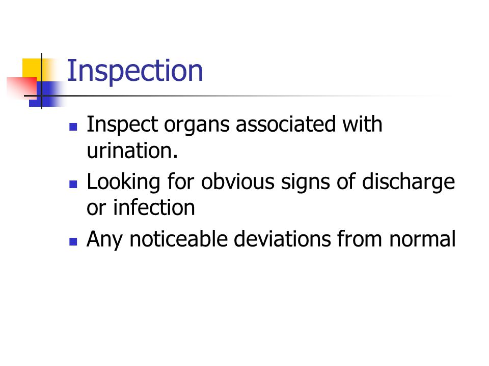 Inspection Inspect organs associated with urination.