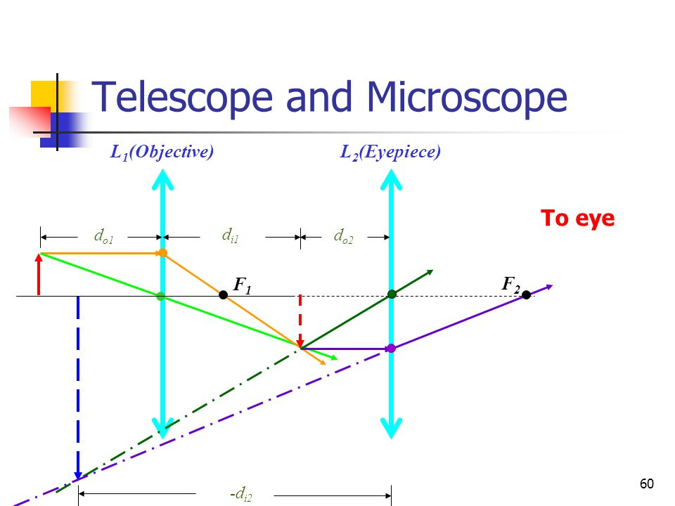 Telescope and Microscope