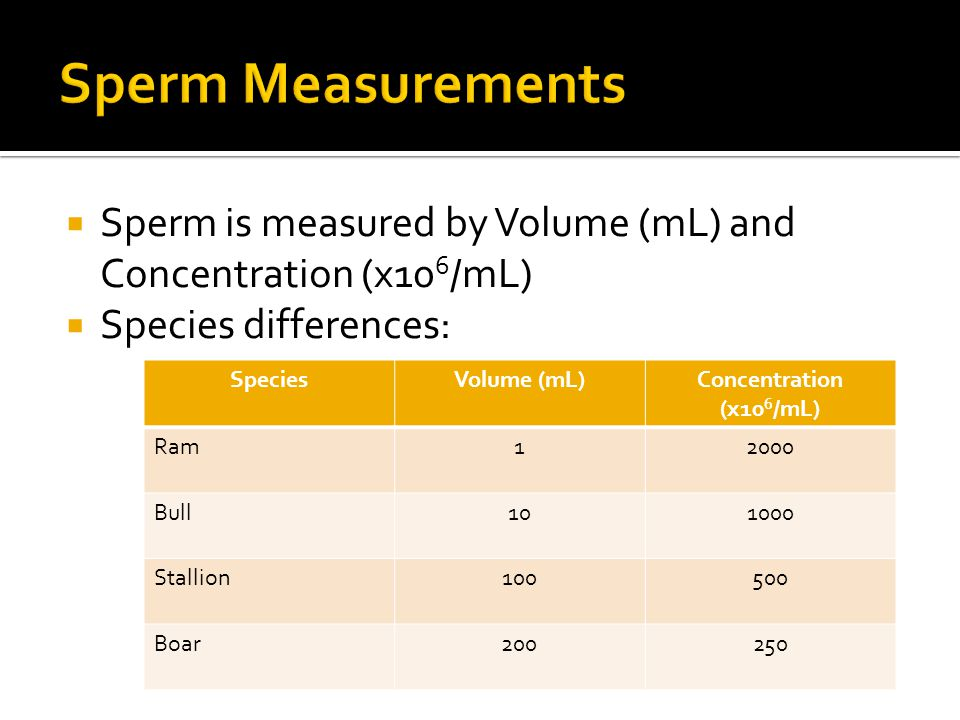 Sperm Measurements Sperm is measured by Volume (mL) and Concentration (x106/mL) Species differences: