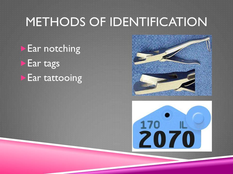 Methods of Identification