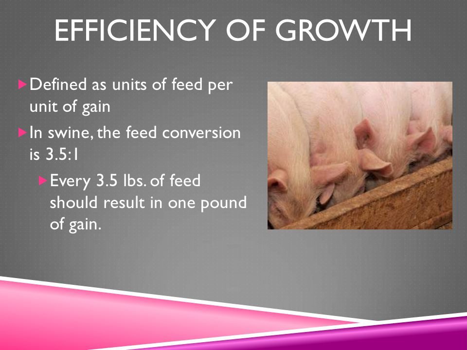 Efficiency of growth Defined as units of feed per unit of gain