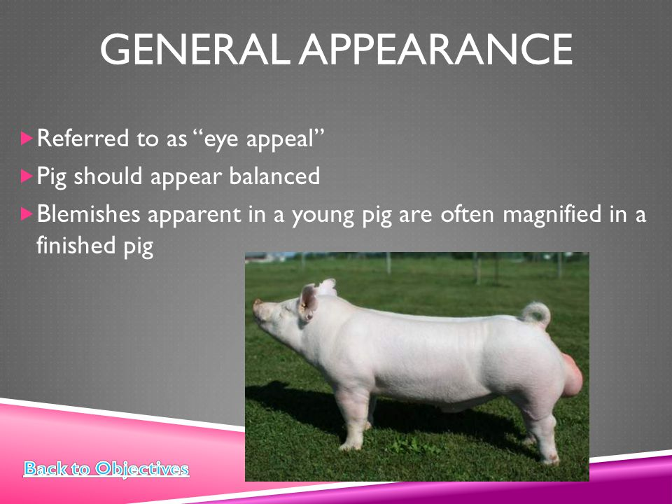General appearance Referred to as eye appeal