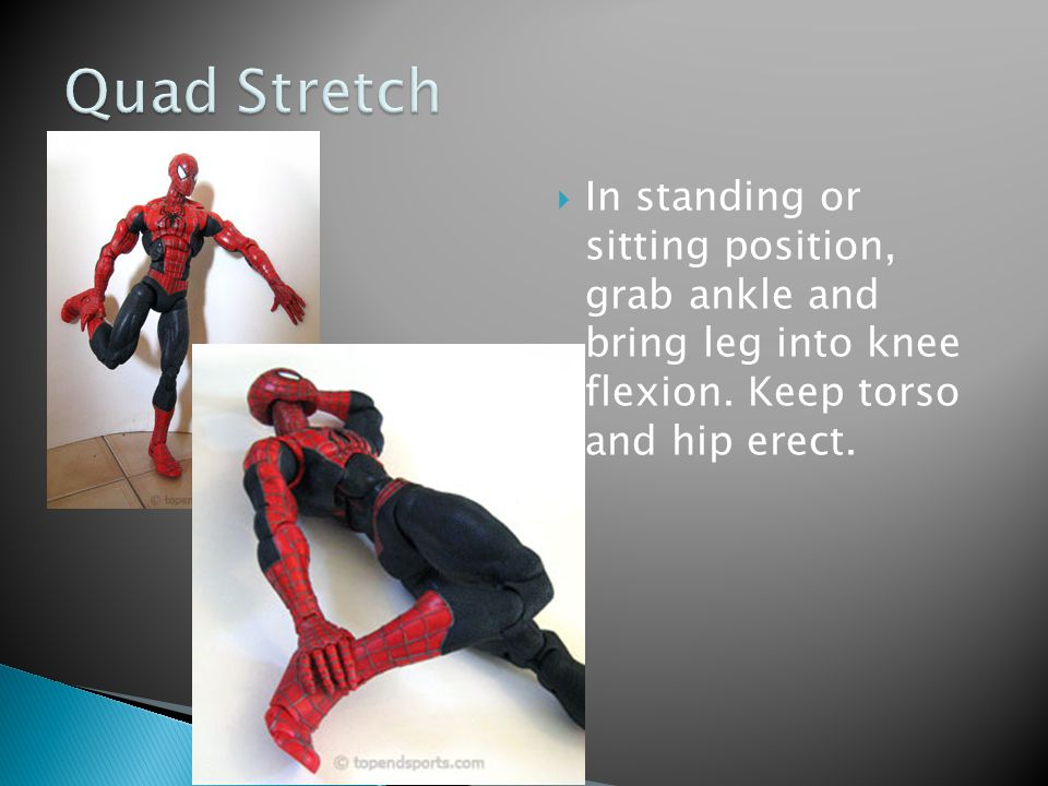 Quad Stretch In standing or sitting position, grab ankle and bring leg into knee flexion.