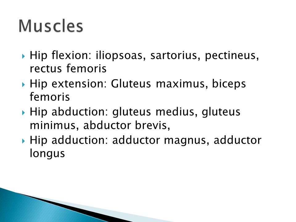 Muscles Hip flexion: iliopsoas, sartorius, pectineus, rectus femoris