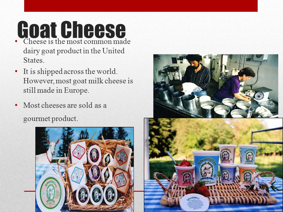 Cheese is the most common made dairy goat product in the United States.