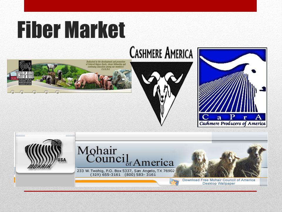 Fiber Market