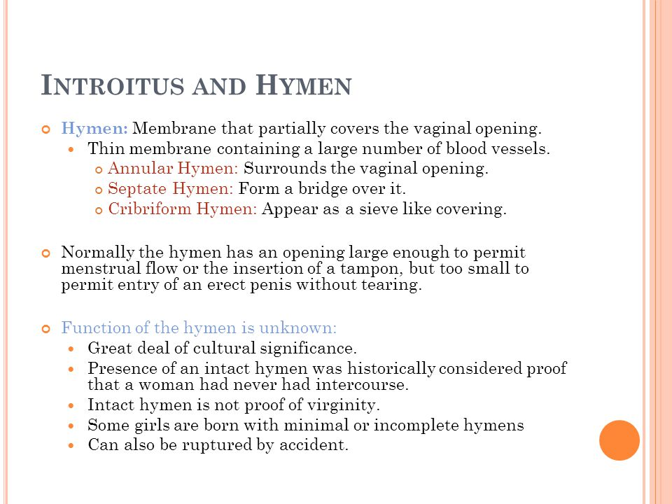 Introitus and Hymen Hymen: Membrane that partially covers the vaginal opening. Thin membrane containing a large number of blood vessels.