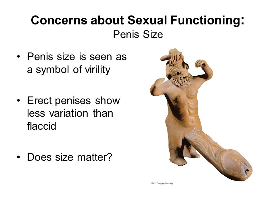 Concerns about Sexual Functioning: Penis Size