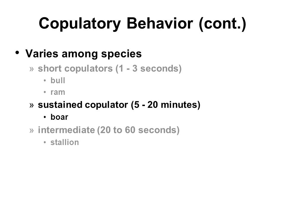 Copulatory Behavior (cont.)