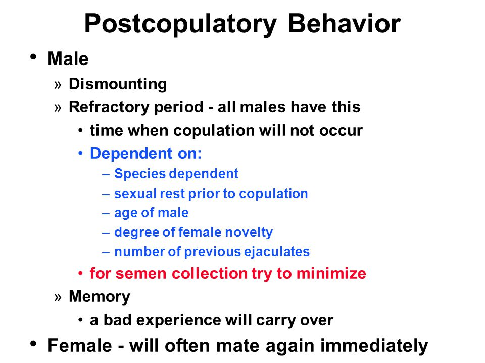 Postcopulatory Behavior