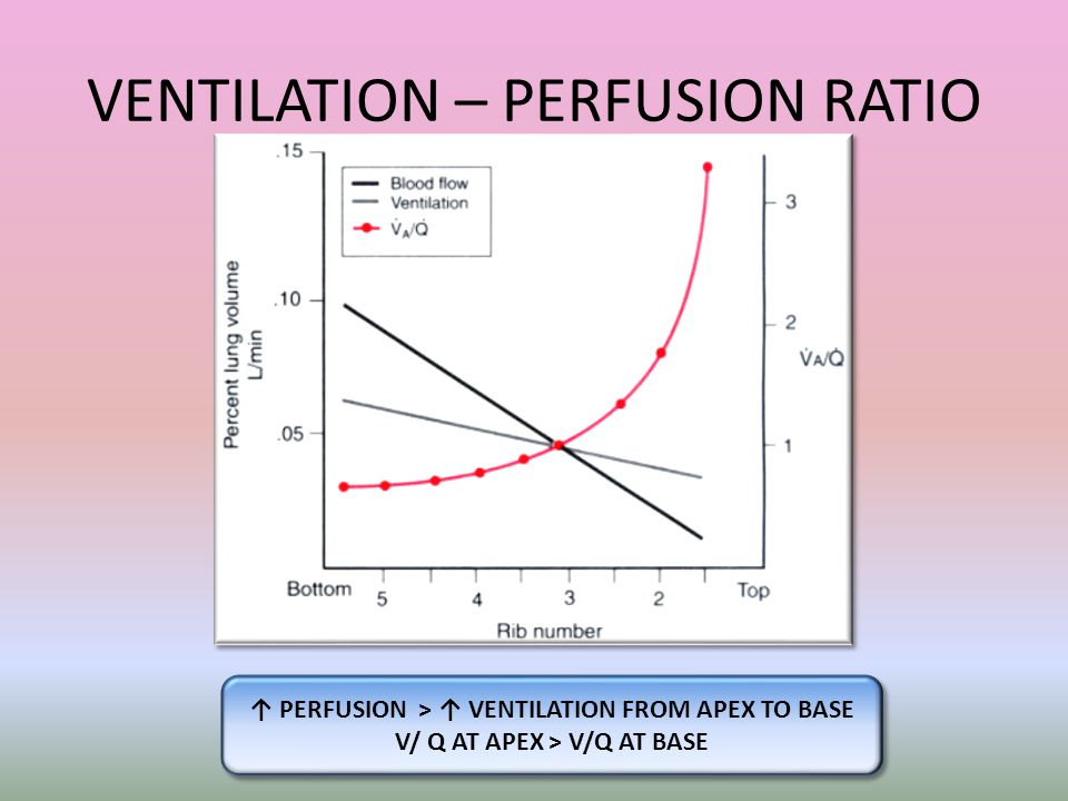 VENTILATION – PERFUSION RATIO
