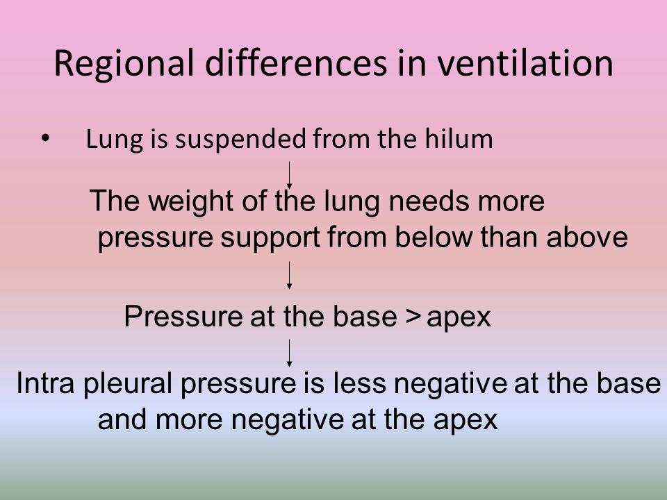 Regional differences in ventilation