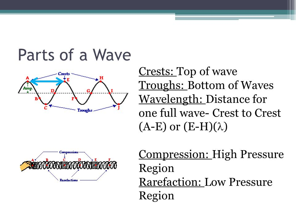 Parts of a Wave Crests: Top of wave Troughs: Bottom of Waves