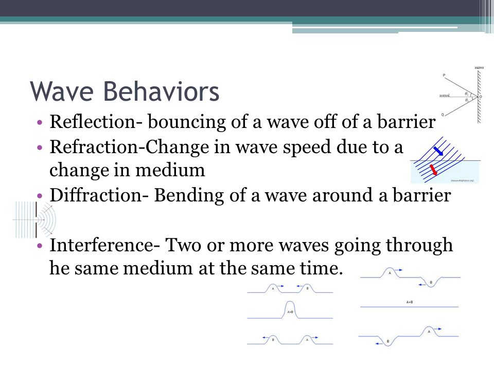Wave Behaviors Reflection- bouncing of a wave off of a barrier