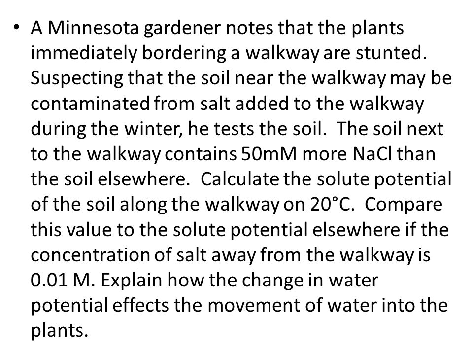 A Minnesota gardener notes that the plants immediately bordering a walkway are stunted.