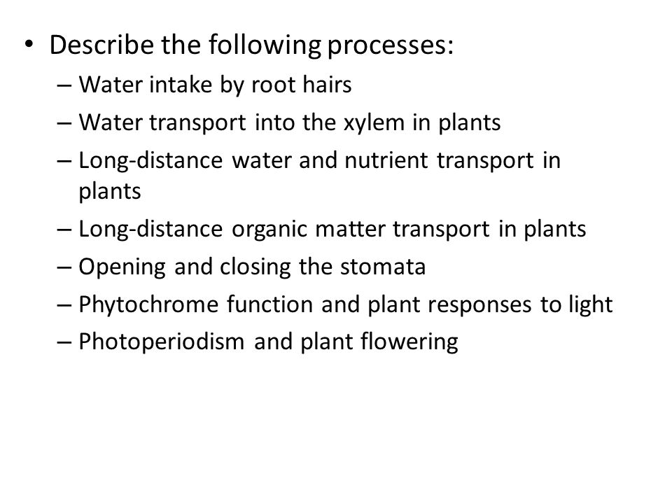 Describe the following processes: