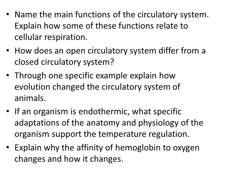 Name the main functions of the circulatory system