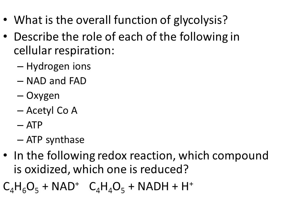 What is the overall function of glycolysis