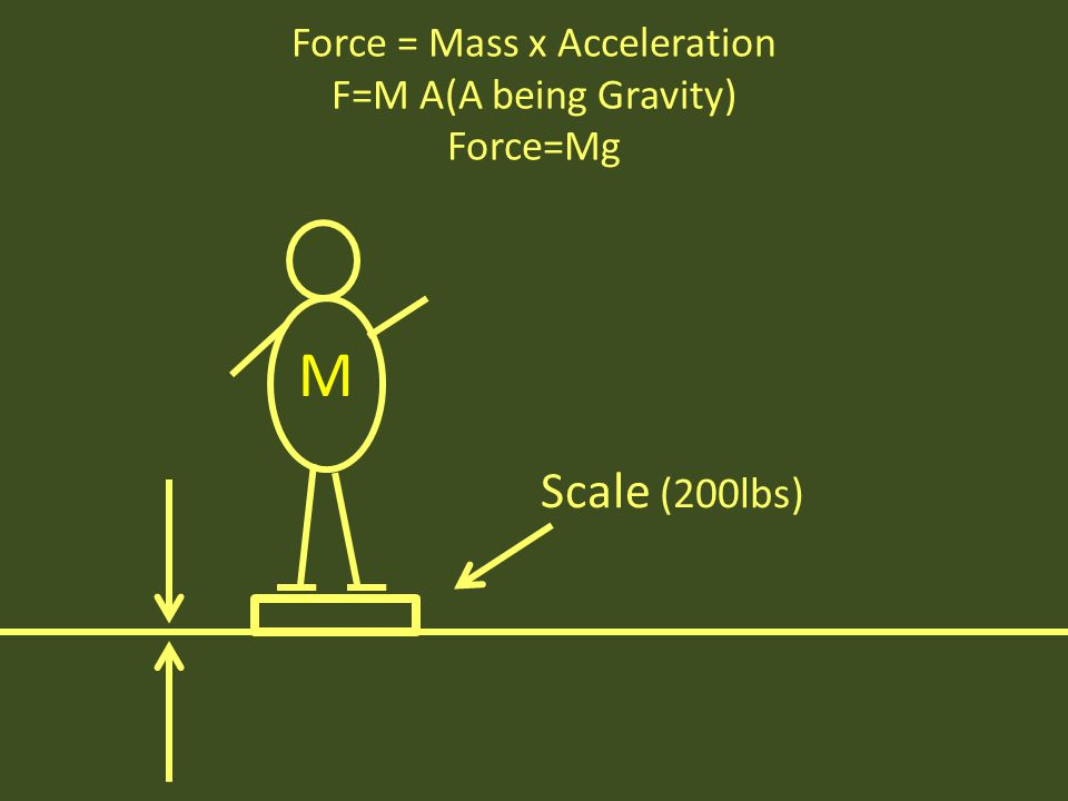 Force = Mass x Acceleration F=M A(A being Gravity) Force=Mg