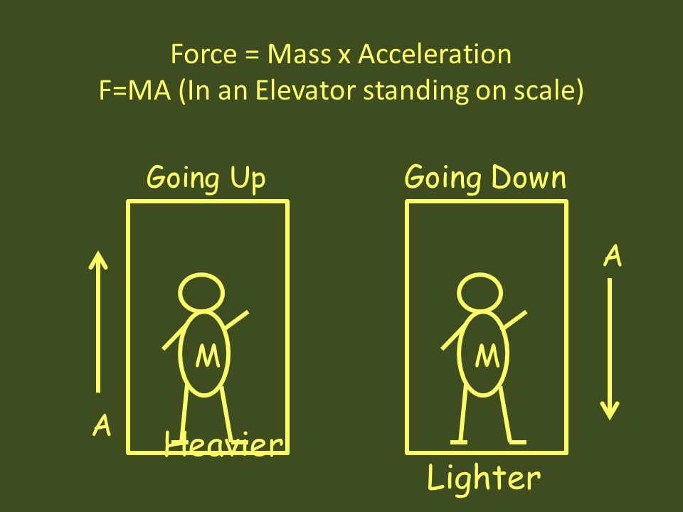 Force = Mass x Acceleration F=MA (In an Elevator standing on scale)