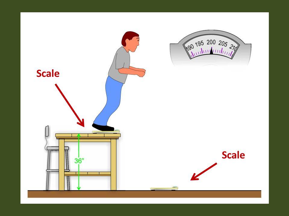 Scale Scale