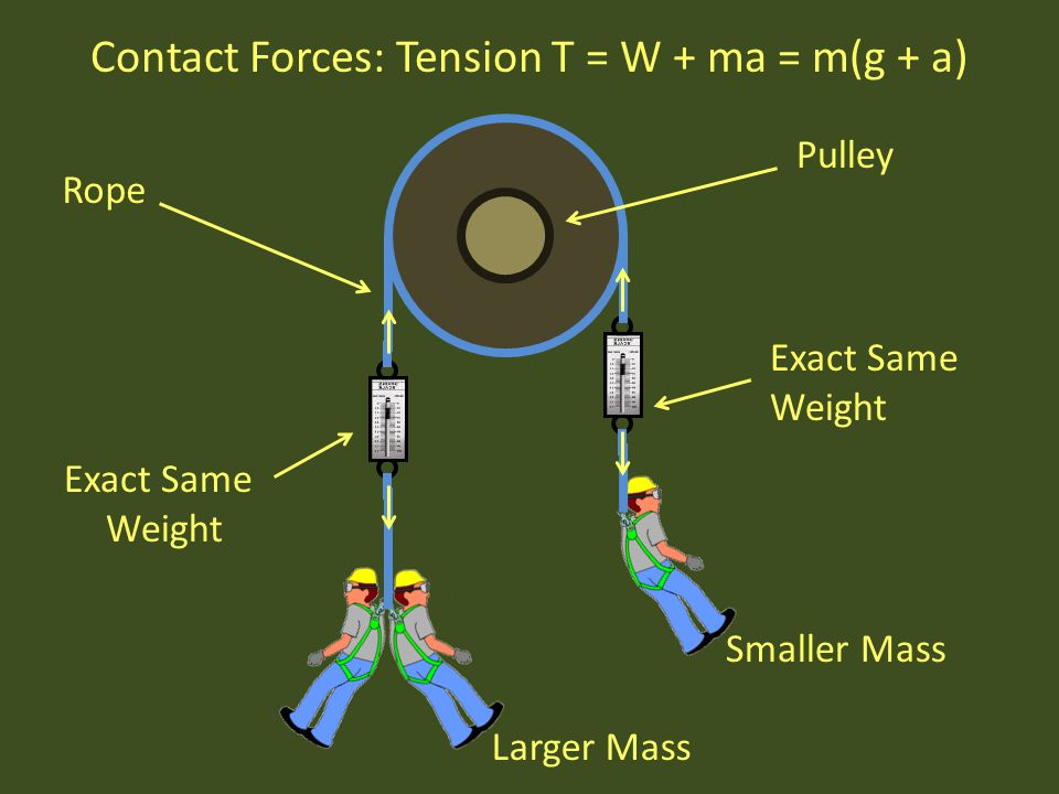 Contact Forces: Tension T = W + ma = m(g + a)