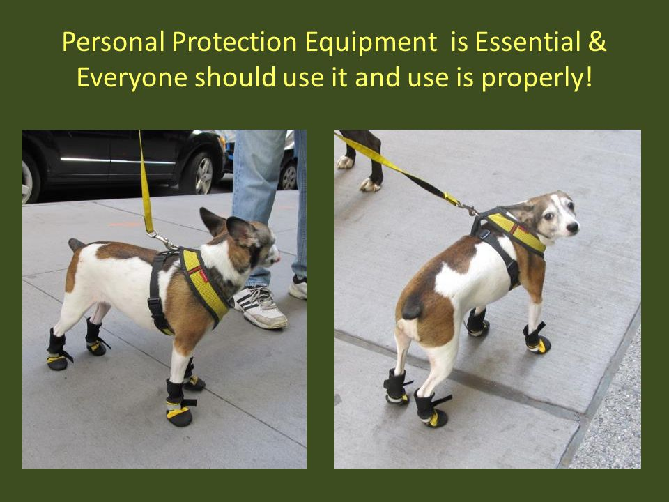 Personal Protection Equipment is Essential & Everyone should use it and use is properly!