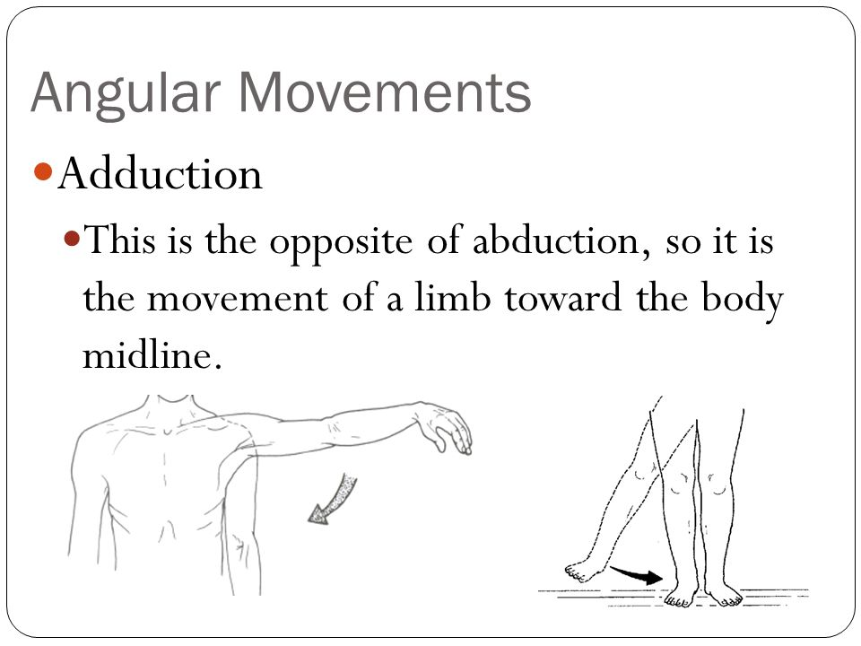 Angular Movements Adduction
