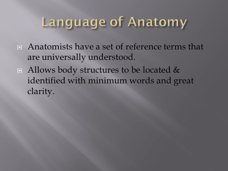 Language of Anatomy Anatomists have a set of reference terms that are universally understood.