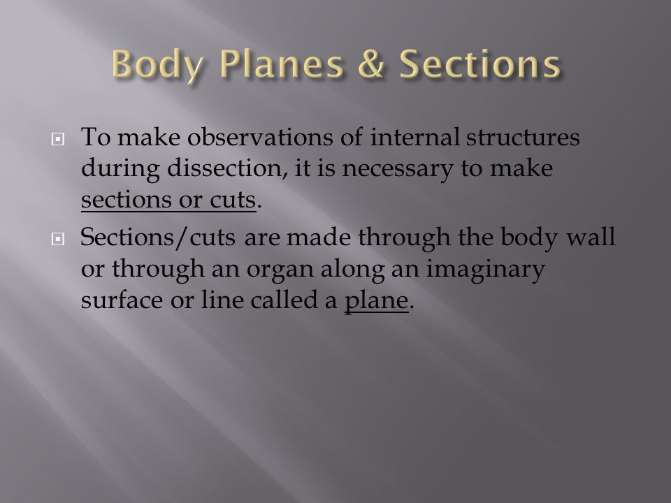 Body Planes & Sections To make observations of internal structures during dissection, it is necessary to make sections or cuts.