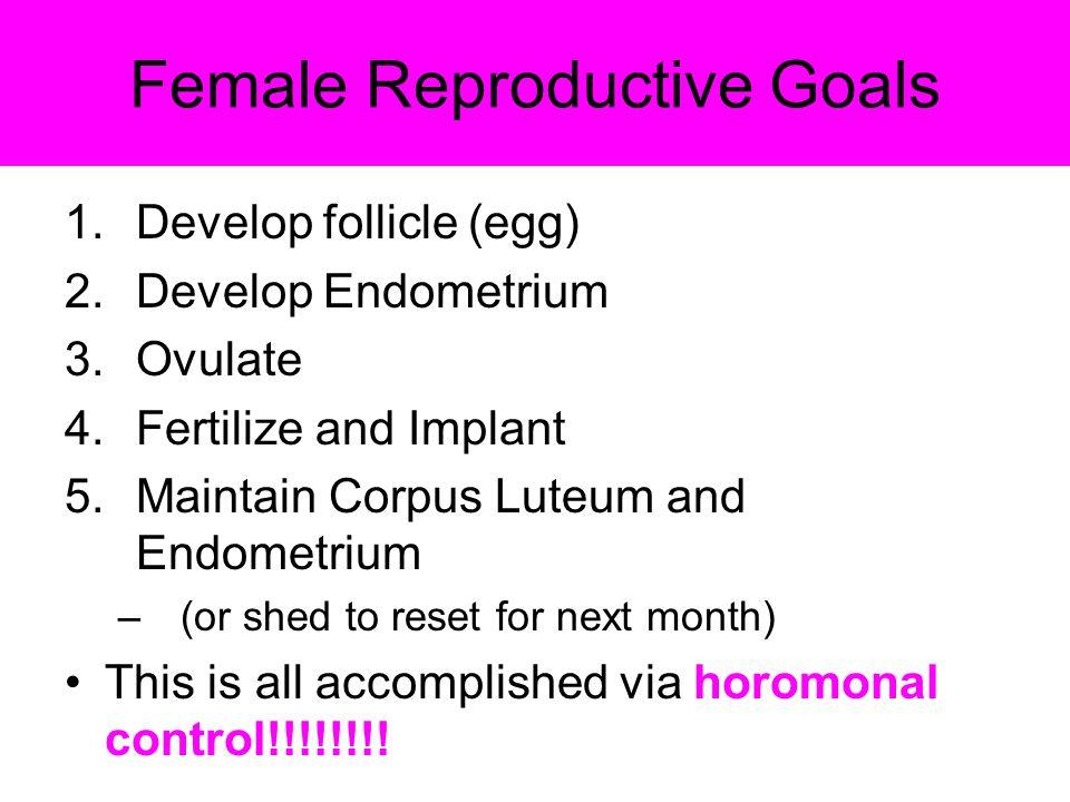 Female Reproductive Goals