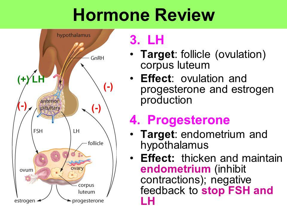 Hormone Review 3. LH 4. Progesterone