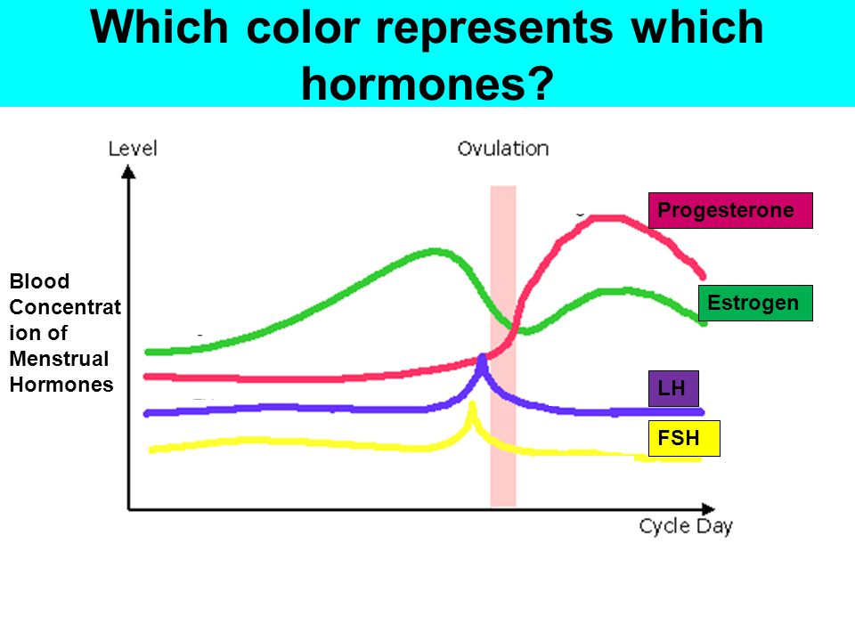Which color represents which hormones