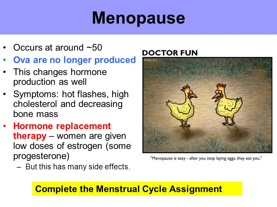 Menopause Occurs at around ~50 Ova are no longer produced