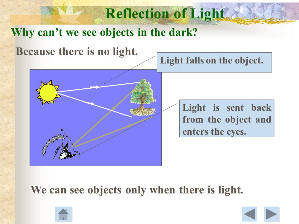 Reflection of Light Why can't we see objects in the dark