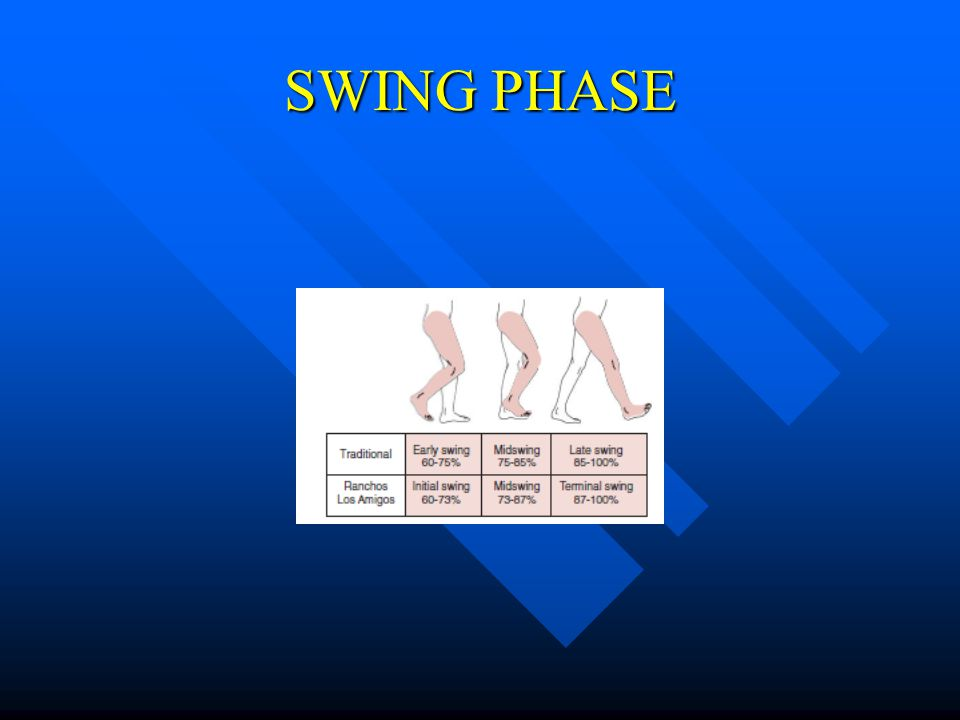 SWING PHASE