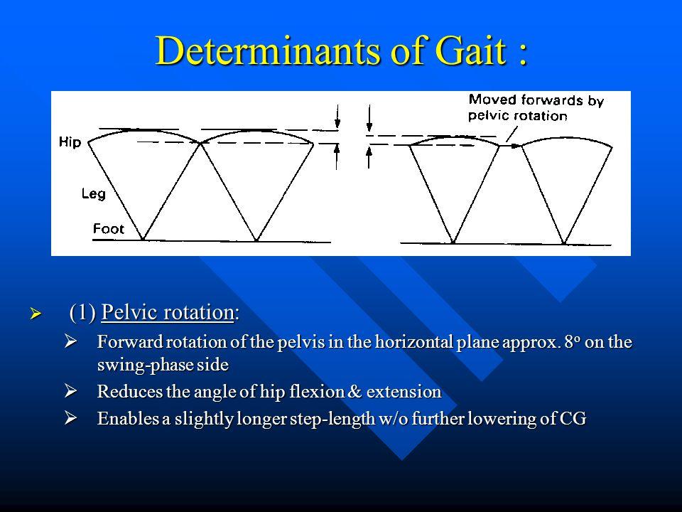 Determinants of Gait : (1) Pelvic rotation: