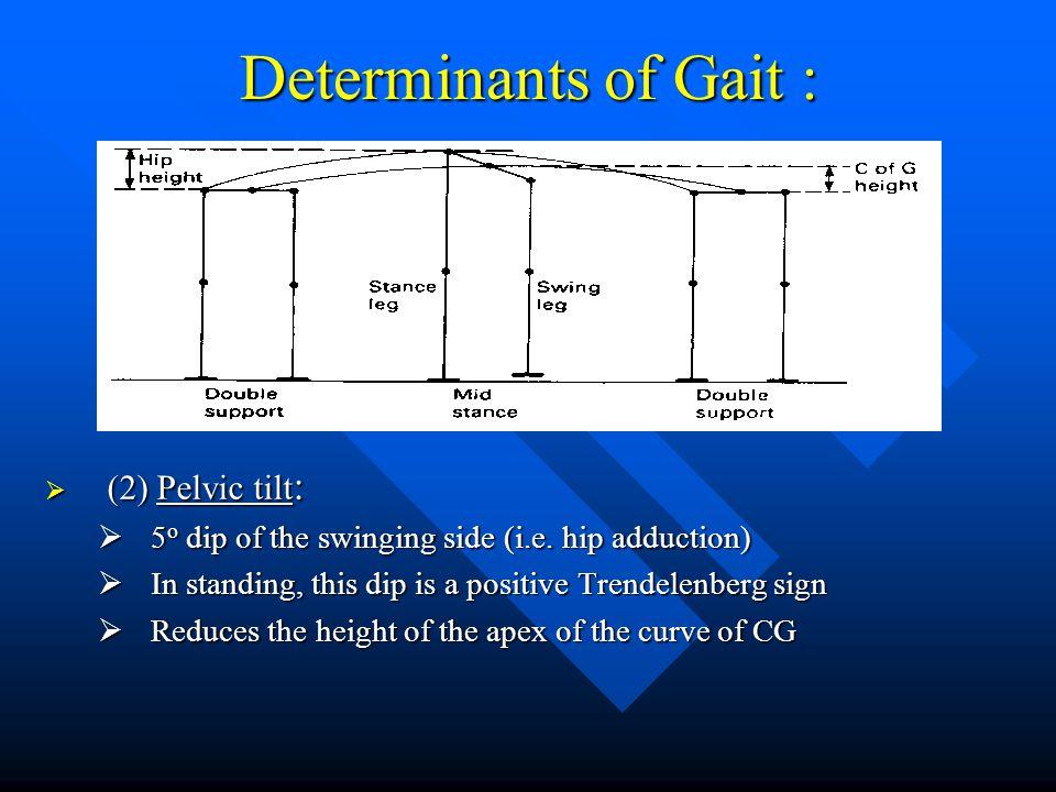 Determinants of Gait : (2) Pelvic tilt: