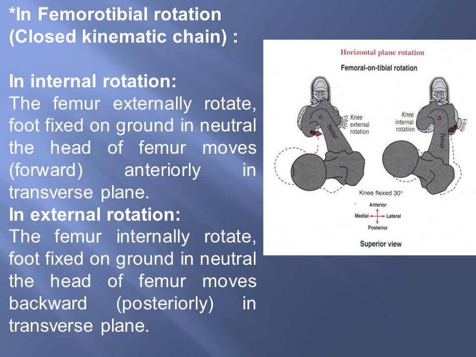 *In Femorotibial rotation