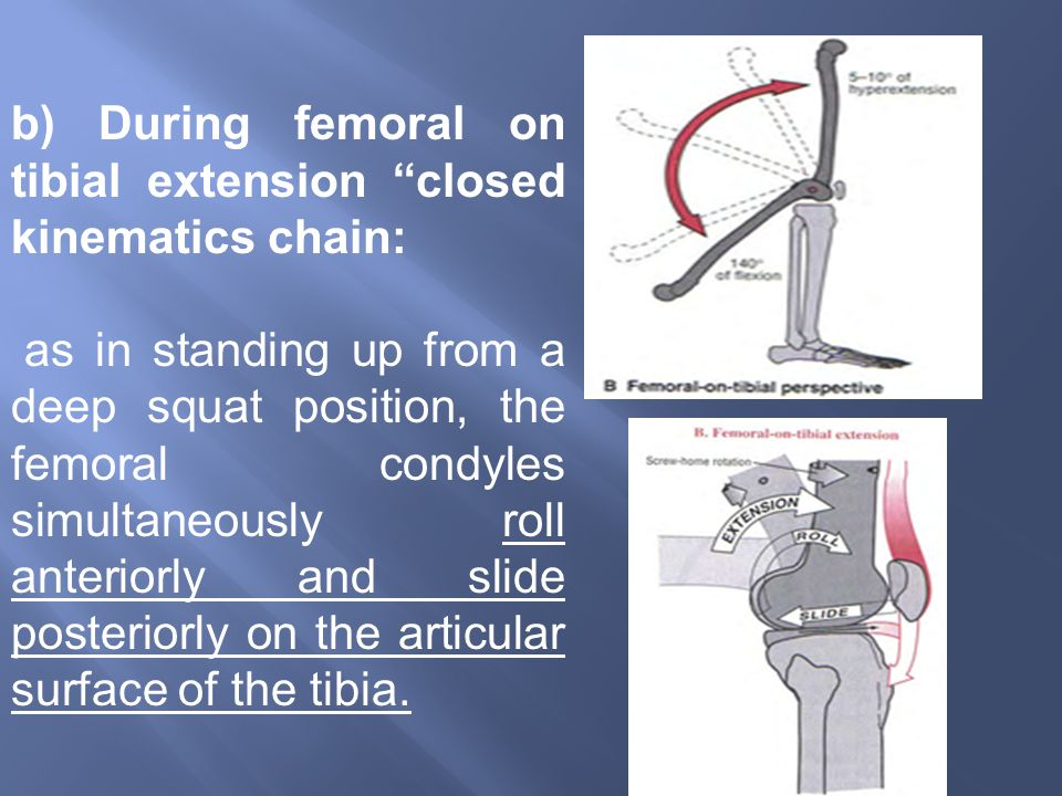b) During femoral on tibial extension closed kinematics chain: