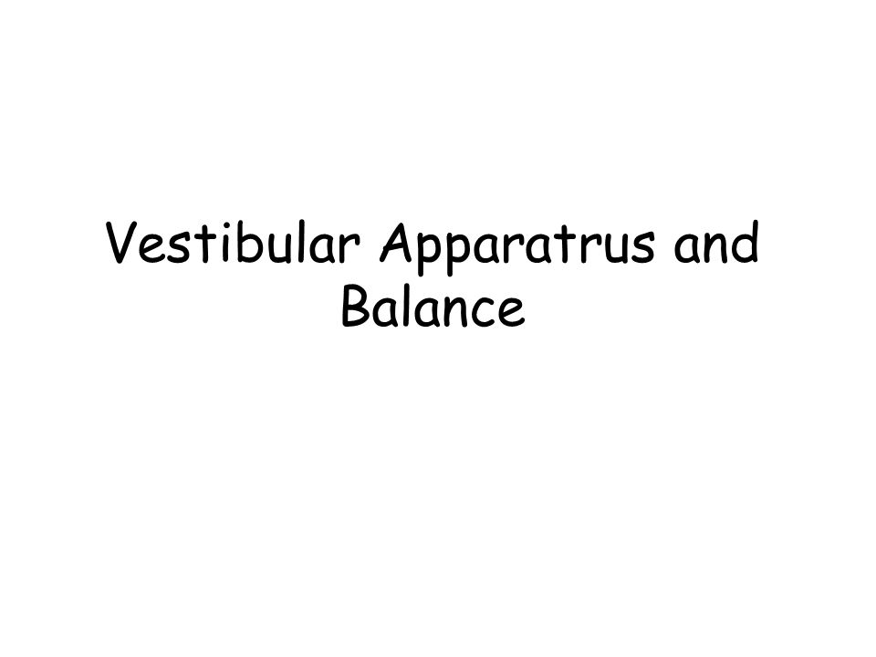 Vestibular Apparatrus and Balance