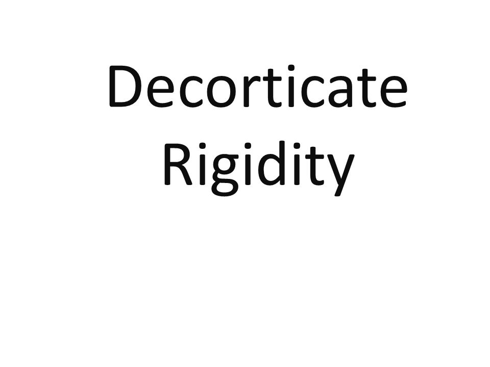 Decorticate Rigidity