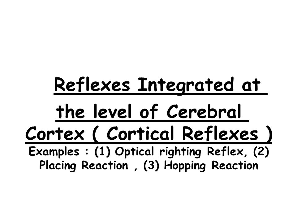 Reflexes Integrated at the level of Cerebral Cortex ( Cortical Reflexes ) Examples : (1) Optical righting Reflex, (2) Placing Reaction , (3) Hopping Reaction