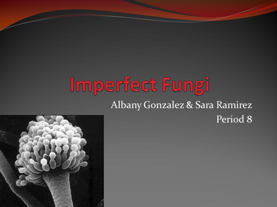 Albany Gonzalez & Sara Ramirez Period 8