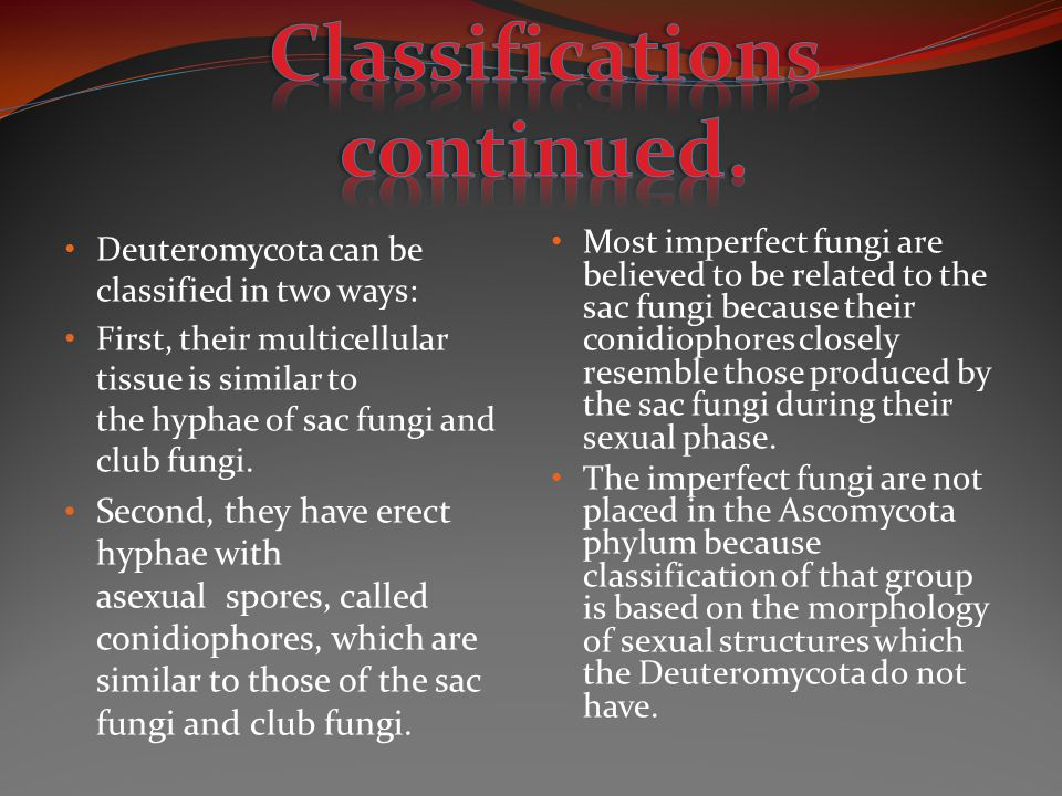Classifications continued.