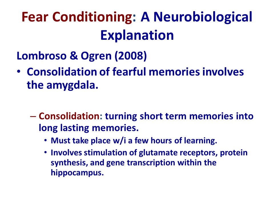 Fear Conditioning: A Neurobiological Explanation