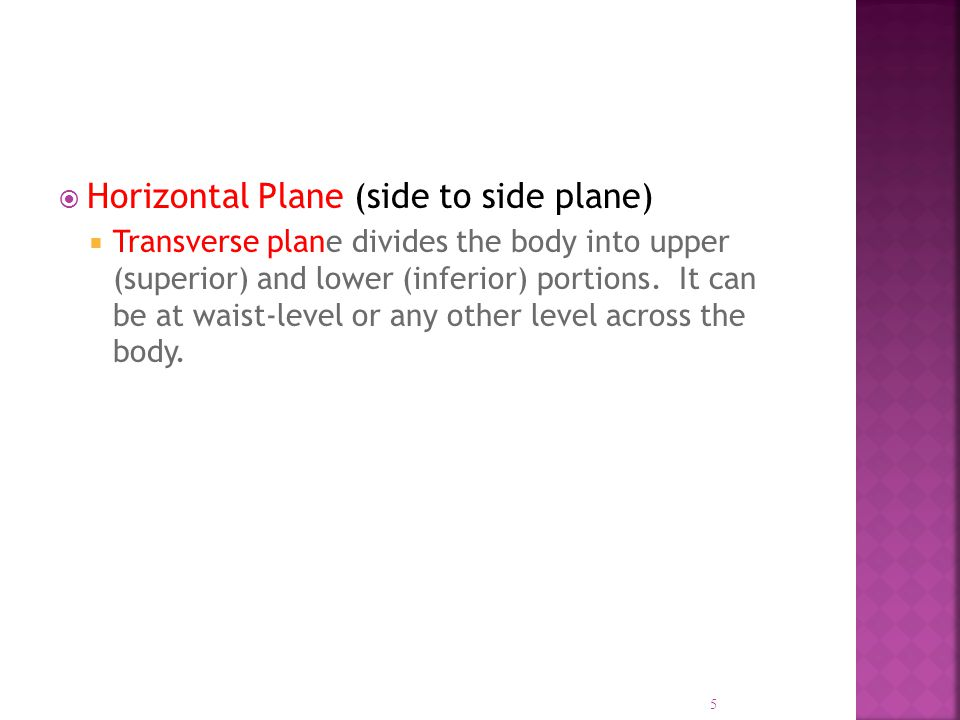 Horizontal Plane (side to side plane)