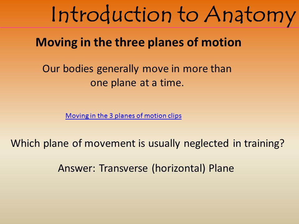 Our bodies generally move in more than one plane at a time.