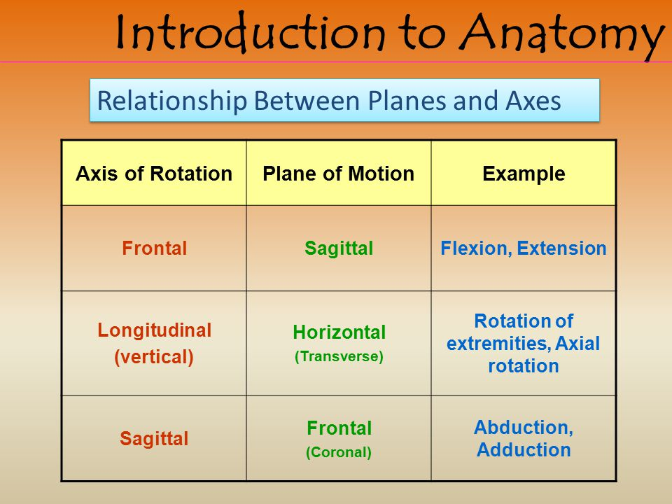 Rotation of extremities, Axial rotation