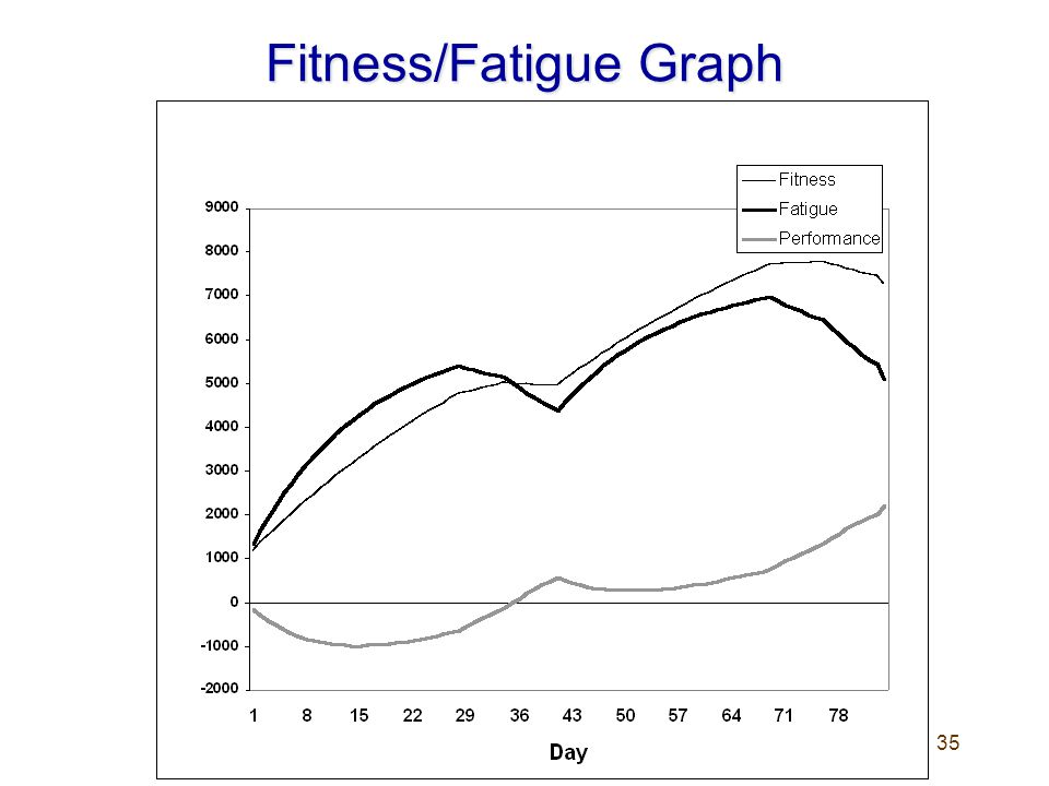 Fitness/Fatigue Graph